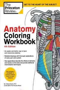 Anatomy Coloring Workbook